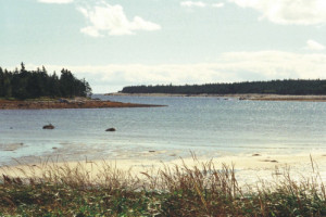 Visit Guysborough: Black Duck Cove Walking Trail