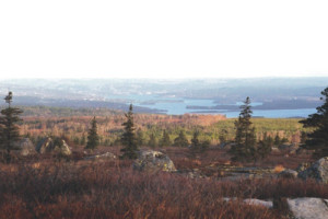 Visit Guysborough: Lundy Fire Tower