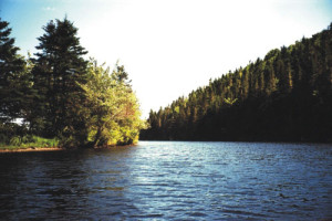 Visit Guysborough: New Harbour River