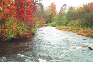Visit Guysborough: Salmon River