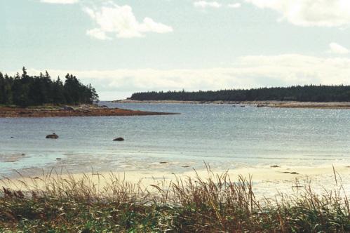 Visit Guysborough: Black Duck Cove Walking Trail