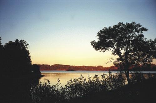 Visit Guysborough: Fort Point Trail