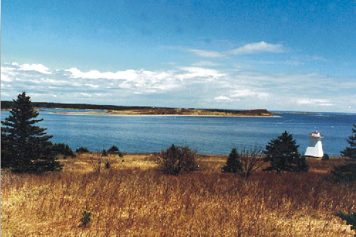 Visit Guysborough: Grassy Island