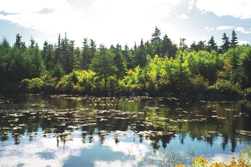 Visit Guysborough: Hazel Hill Lake