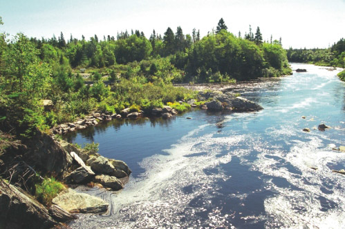 Visit Guysborough: Liscomb River