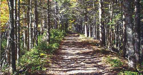 Visit Guysborough: Trans Canad Trail