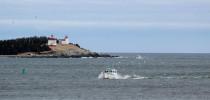 Port Bickerton Lighthouse Interpretive Centre